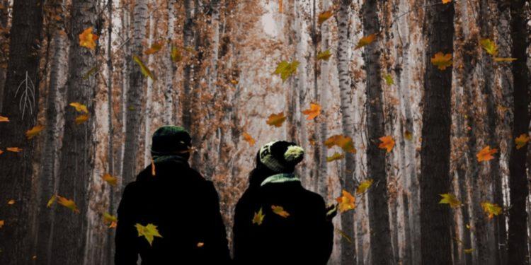 https://pixabay.com/en/couple-fall-autumn-nature-walk-2765327/