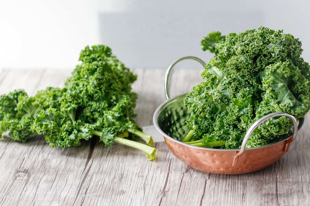 The 411 on Kale and Why It's Popular