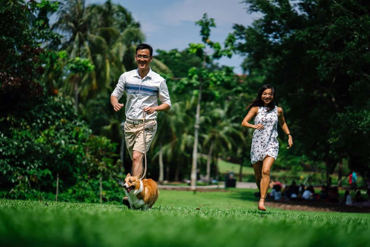 Finding Love with the Help of Your Dog