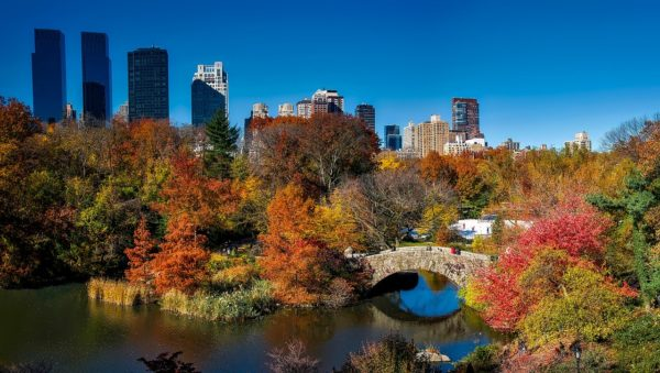 Incredible destination weddings -New York