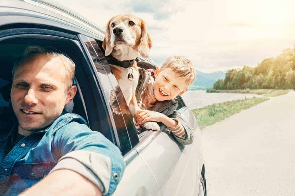 5 Tips for Traveling Cross Country with Pets